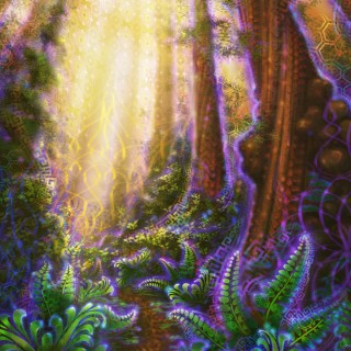 Metta Grove - psychedelic forest by Simon Haiduk