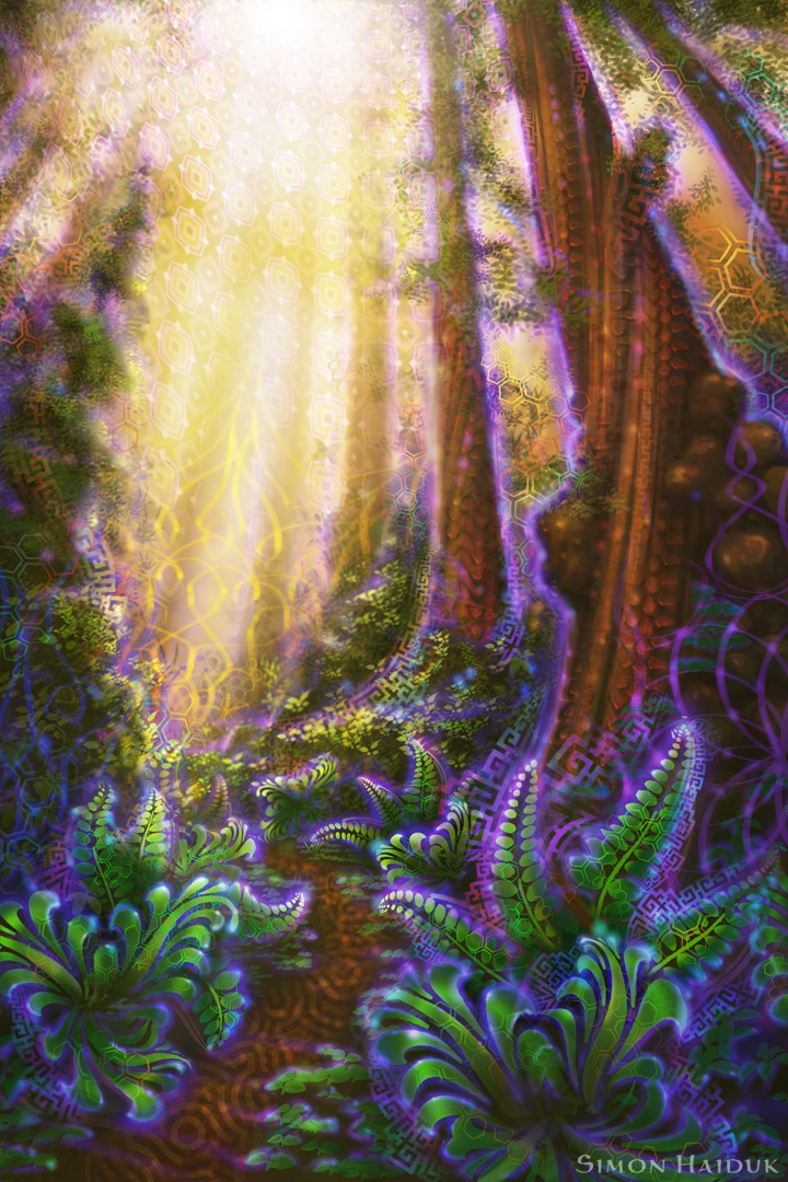 metta grove psychedelic forest by simon haiduk pod